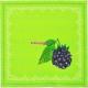 Набор салфеток 40*40 см (зеленый), Ягодная рапсодия, 4 шт
